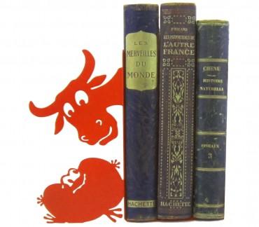 Cale-livres rouge grenouille décoration enfant